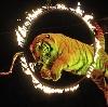 Цирки в Балабаново